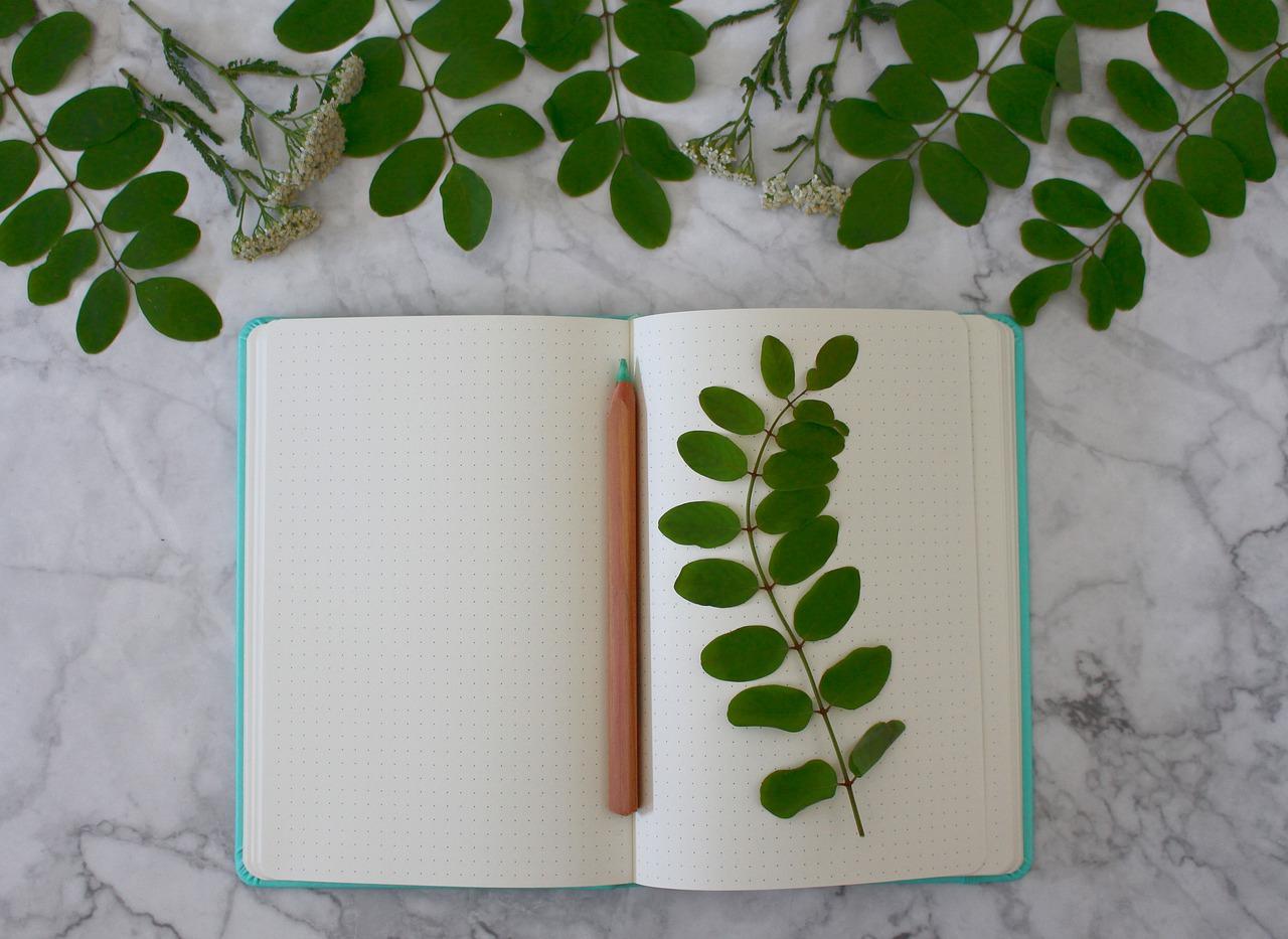 Notebook Registration Book Book  - Monfocus / Pixabay